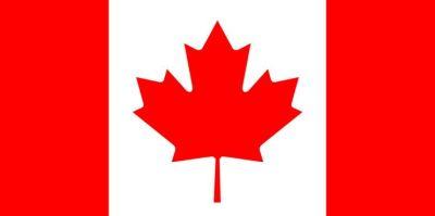 Curiosidade: folha do plátano na bandeira do Canadá